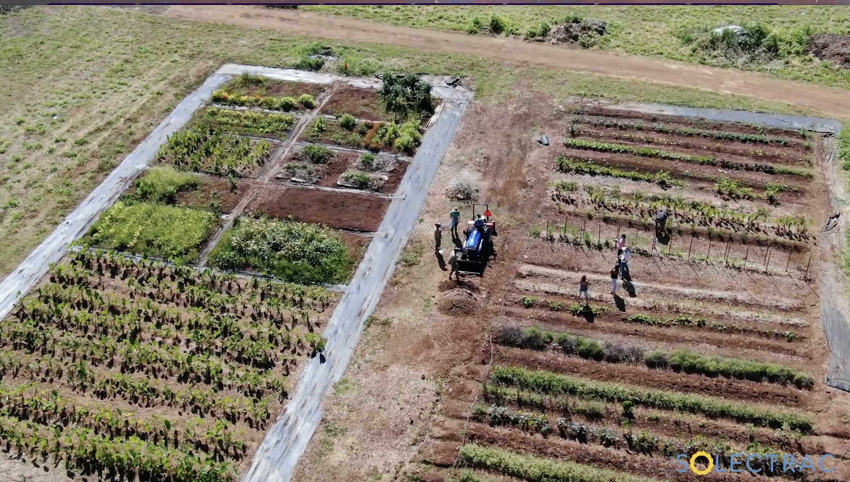 Kōkua Learning Farm